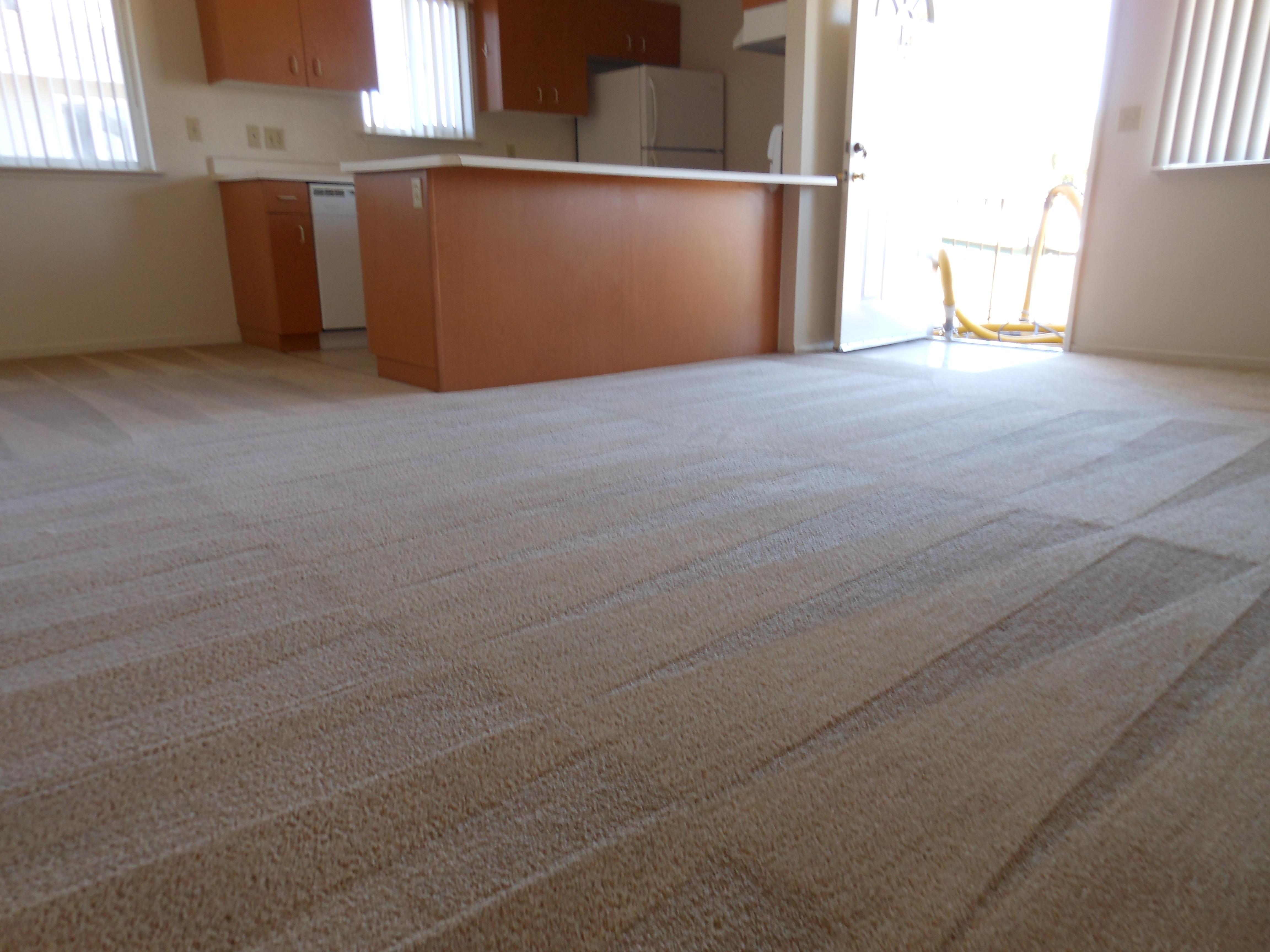 carpet 016
