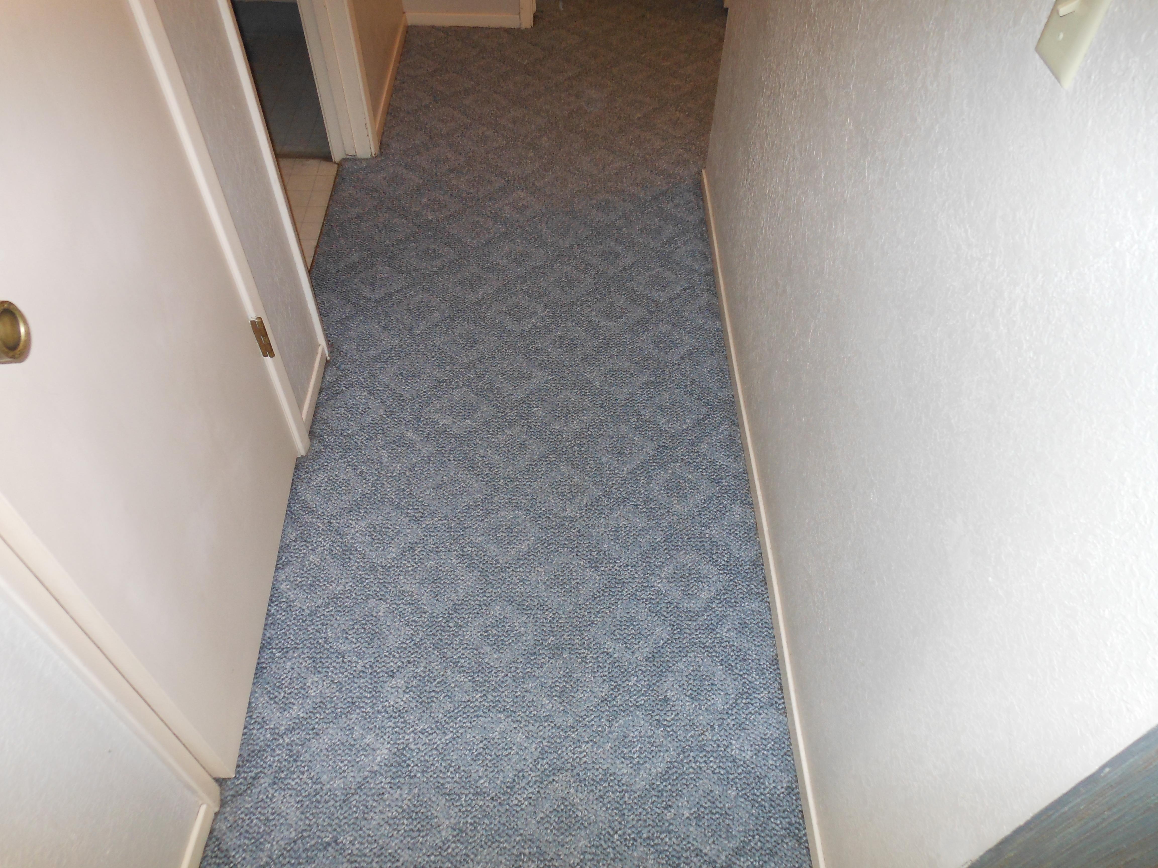 carpet 052